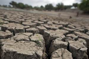 Image for drought